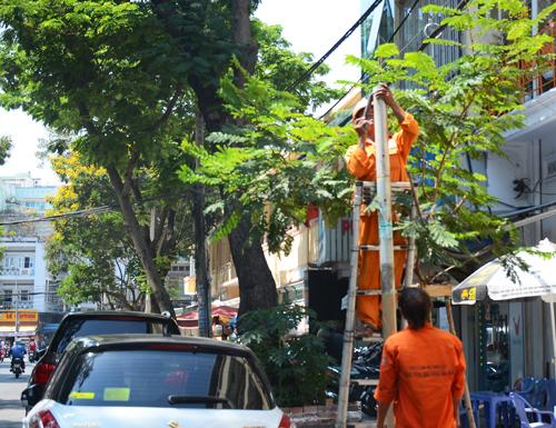 Biển báo cấm xe khách trên 9 chỗ dừng, đổ trên đường Lê Thị Hồng Gấm (quận 1) được gắn ngay sau tin nhắn của người dân đến tân Bí thư Thành ủy Đinh La Thăng. Ảnh: Đ.L