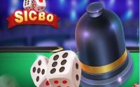 Các thể loại cược trong tài xỉu Sicbo bạn cần biết